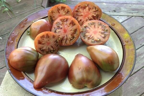 Сорт томата Гном: лучшие разновидности